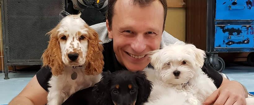 Cursos de adestramento de Cães e Gatos Alexandre Rossi